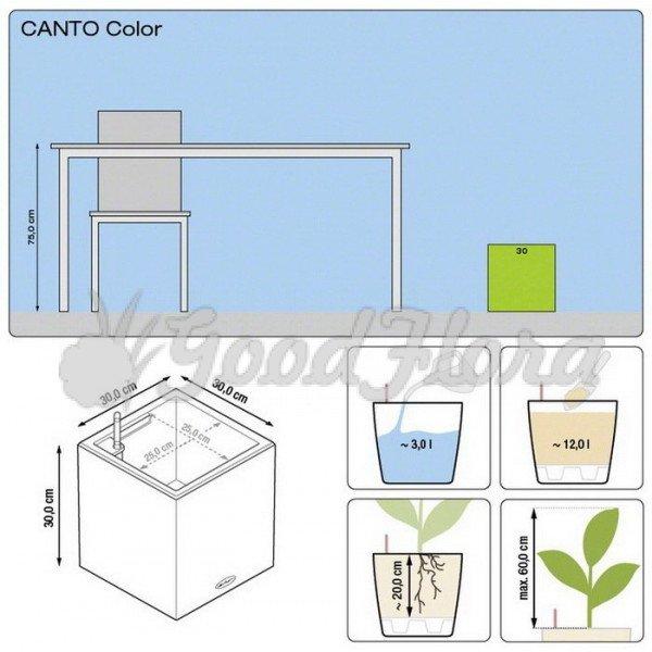 Кашпо Canto Color Square 30 с системой автополива