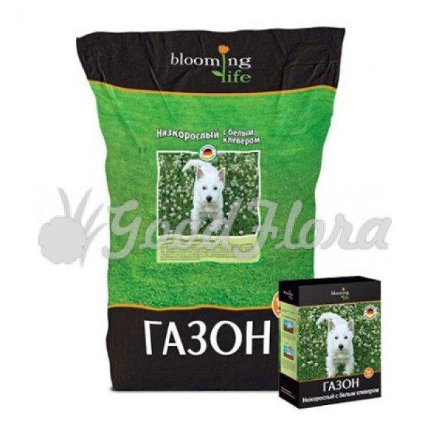 Низкорослый газон с белым клевером (1 кг)